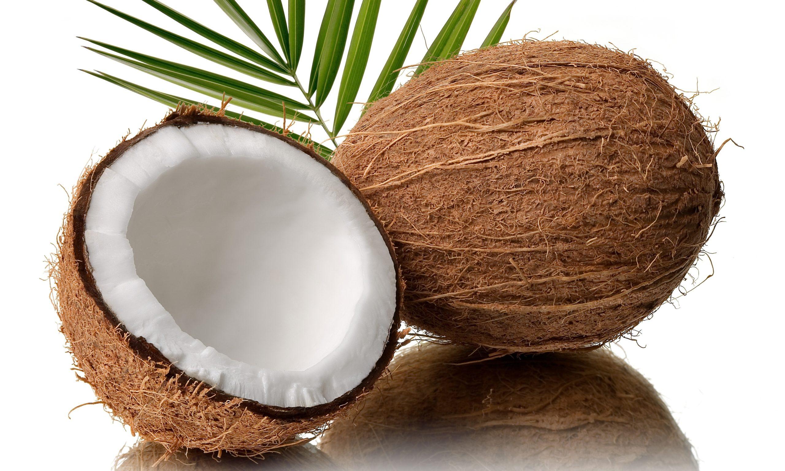 My coconut