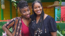 Fulani Braids by Dy'a coiffure |Guadeloupe