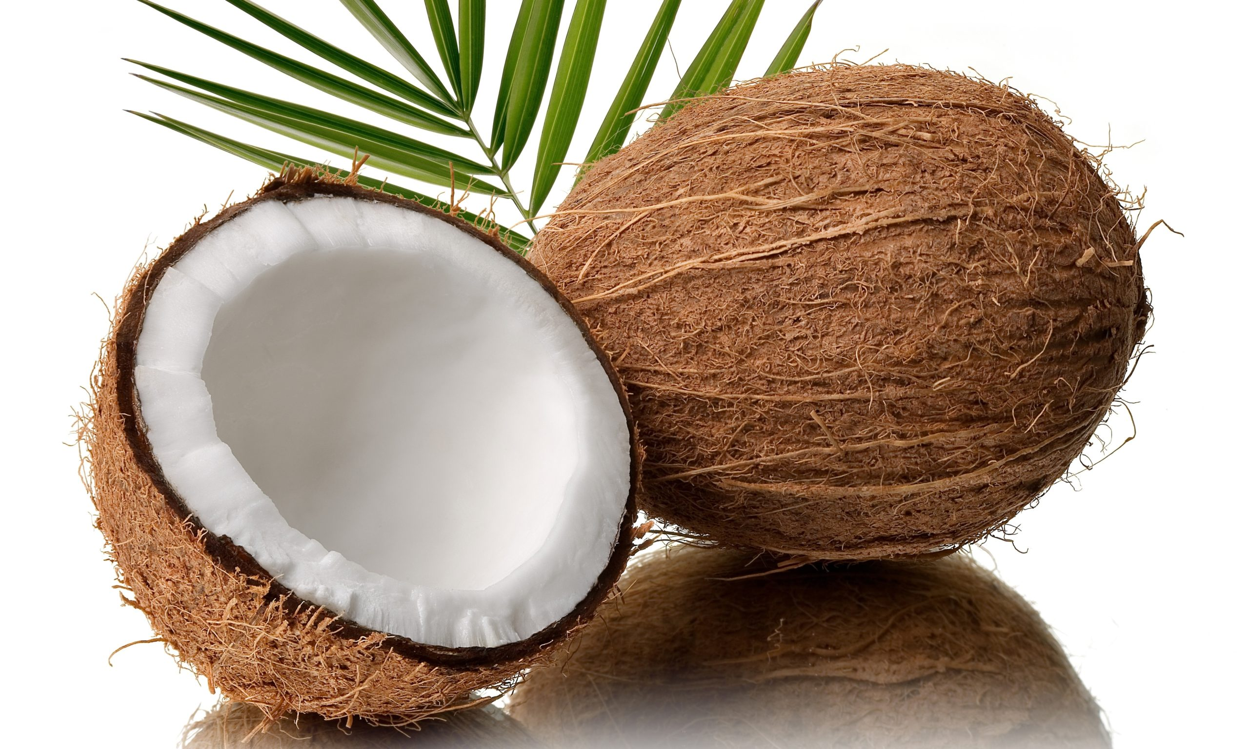 My coconut